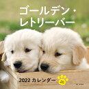 2022年 カレンダー ゴールデン・レトリーバー【100名様に1、000円分の図書カードをプレゼント!】