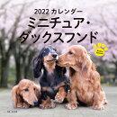 2022年 カレンダー ミニチュア・ダックスフンド【100名様に1、000円分の図書カードをプレゼント!】