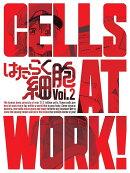 はたらく細胞 2(完全生産限定版)【Blu-ray】