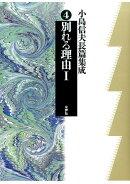 小島信夫長篇集成(第4巻)