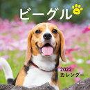 2022年 カレンダー ビーグル【100名様に1、000円分の図書カードをプレゼント!】