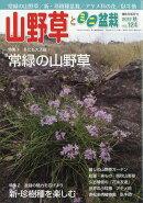 山野草とミニ盆栽 2017年 11月号 [雑誌]