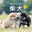2022年 カレンダー 柴犬【100名様に1、000円分の図書カードをプレゼント!】