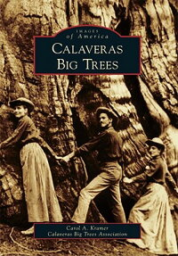 Calaveras_Big_Trees