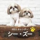2022年 カレンダー シー・ズー【100名様に1、000円分の図書カードをプレゼント!】