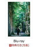 【先着特典】散り椿(特製クリアファイル付き)【Blu-ray】
