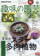 NHK 趣味の園芸 2020年 12月号 [雑誌]