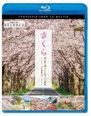 さくら 春を彩る 華やかな桜のある風景 4K撮影作品【Blu-ray】