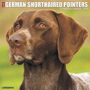 Just German Shorthaired Pointers 2019 Wall Calendar (Dog Breed Calendar)