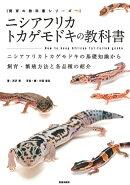 【予約】ニシアフリカトカゲモドキの教科書