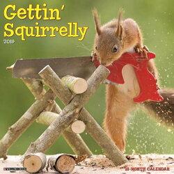 Gettin' Squirrelly 2019 Wall Calendar