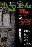 小説宝石 2017年 12月号 [雑誌]