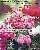 NHK 趣味の園芸 2018年 12月号 [雑誌]