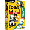 B's 動画レコーダー 5+DVDビデオ