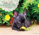 2022年 カレンダー かわいいフレンチ・ブルドッグ【100名様に1、000円分の図書カードをプレゼント!】