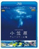 世界自然遺産 小笠原 〜ボニンブルーの海〜【Blu-ray】