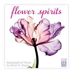 Flower Spirits 2018 Calendar: Radiographs of Nature by Steven N. Meyers