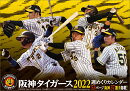 卓上 阪神タイガース週めくり(2022年1月始まりカレンダー)