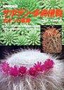 サボテン 多肉植物 ポケット