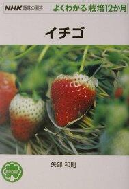 イチゴ (NHK趣味の園芸ーよくわかる栽培12か月) [ 矢部和則 ]
