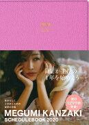 MEGUMI KANZAKI SCHEDULE BOOK ピ