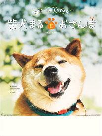 柴犬まるとおさんぽ(2020年1月始まりカレンダー)