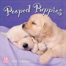 Pooped Puppies 2018 Calendar