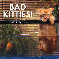 Bad_Kitties_Cute_Kittens