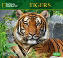 National Geographic Tigers 2018 Wall Calendar