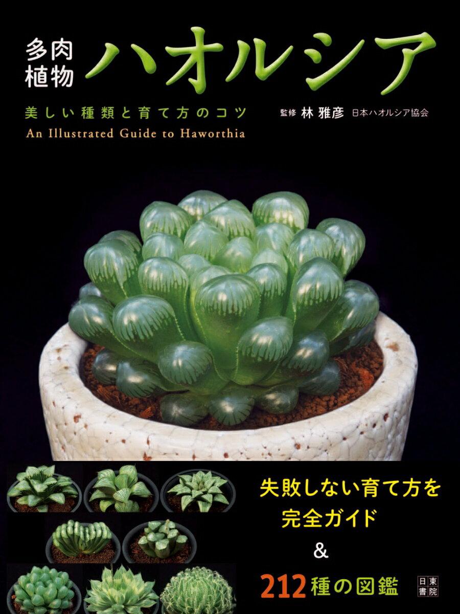 多肉植物ハオルシア 美しい種類と育て方のコツ [ 林雅彦 ]