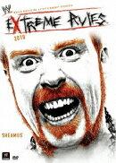 WWE エクストリーム・ルールズ 2010