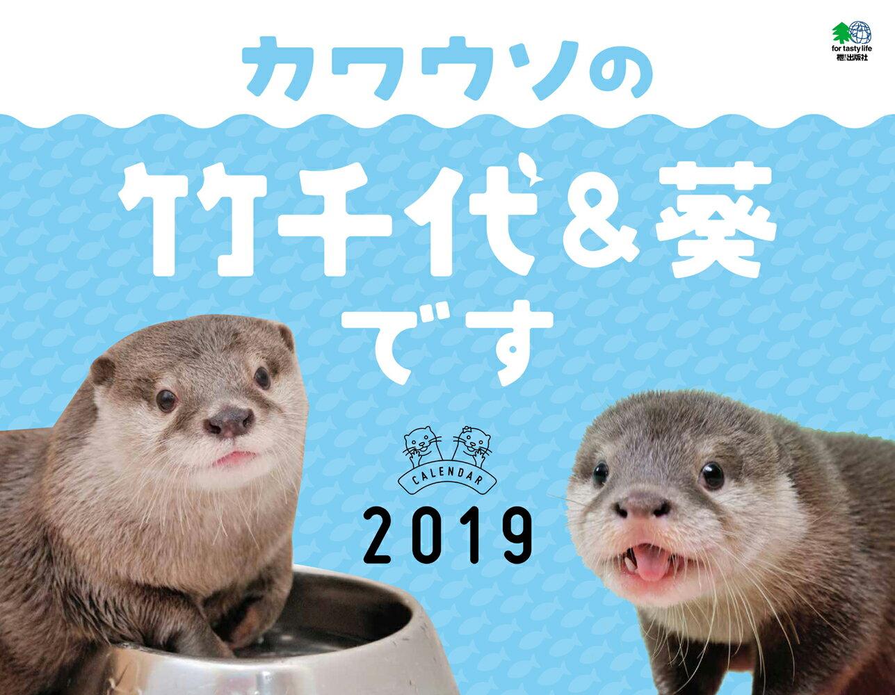 カワウソの竹千代&葵ですカレンダー 壁掛け(2019)