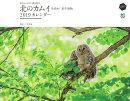 カレンダー 東京カメラ部×エイ出版社 北のカムイ 命煌めく、野生動物