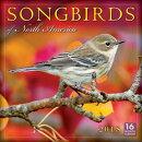 Songbirds of North America 2018 Wall Calendar