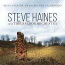 【輸入盤】Steve Haines And The Third Floor Orchestra