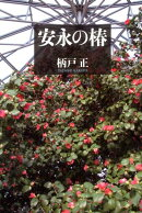 【謝恩価格本】安永の椿