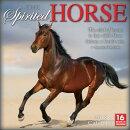 Spirited Horse 2018 Calendar