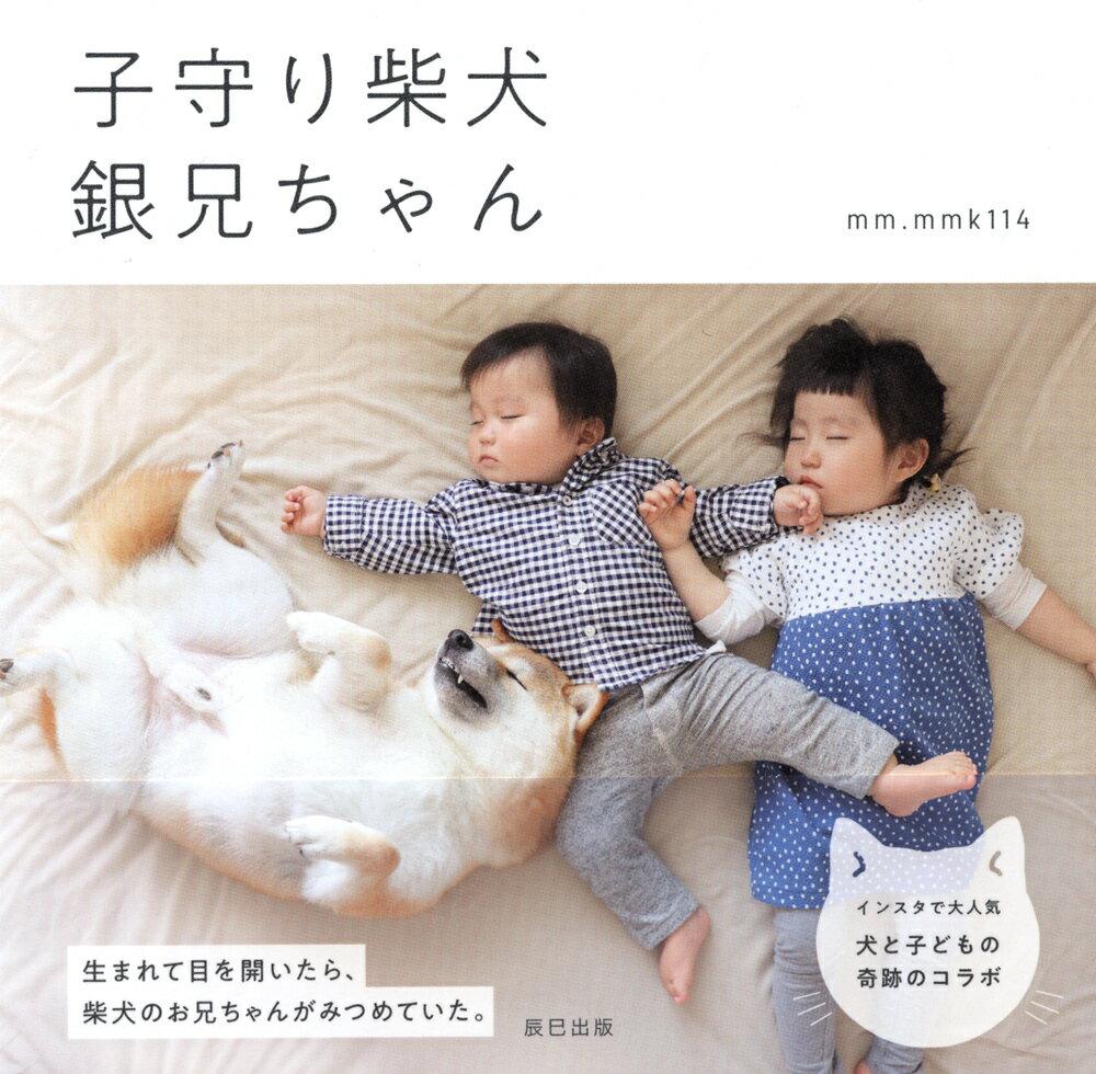 子守り柴犬銀兄ちゃん [ mm.mmk114 ]