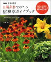 日照条件でわかる宿根草ガイドブック 毎月の庭の管理・作業カレンダー掲載 (生活実用シリーズ) [ 小黒晃 ]