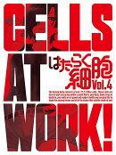 はたらく細胞 4(完全生産限定版)【Blu-ray】