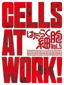 はたらく細胞 5(完全生産限定版)【Blu-ray】