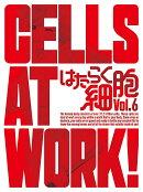 はたらく細胞 6(完全生産限定版)【Blu-ray】