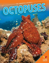 Octopuses[ColleenKessler]
