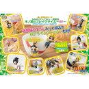 お茶友シリーズ NARUTO-ナルトー 疾風伝 木ノ葉のブレイクタイム〜改!〜(BOX)