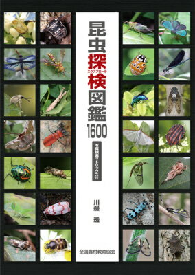 昆虫探検図鑑1600 [ 川邊透 ]