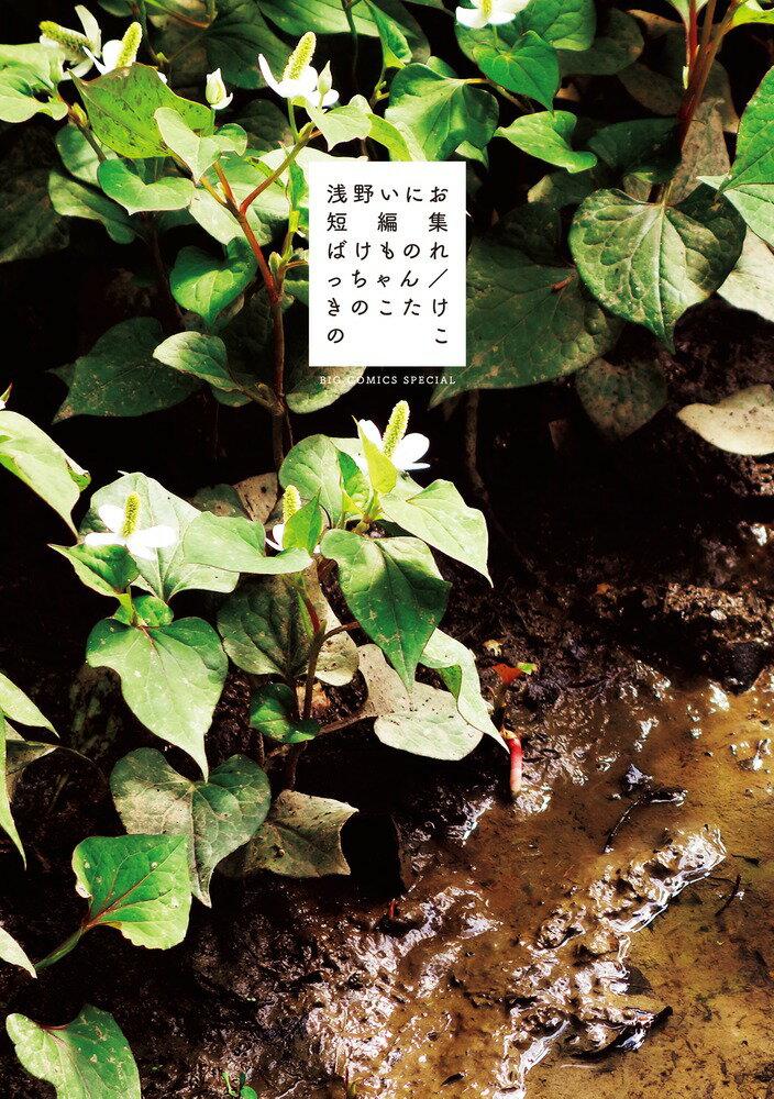 浅野いにお短編集 ばけものれっちゃん/きのこたけのこ (ビッグ コミックス〔スペシャル〕) [ 浅野 いにお ]