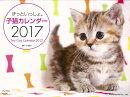 【バーゲン本】ずっといっしょ。子猫カレンダー2017