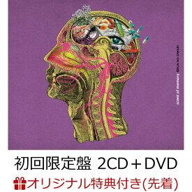 【楽天ブックス限定先着特典】scent of memory (初回限定盤 2CD+DVD)(レコード型コースター) [ SEKAI NO OWARI ]