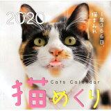 猫めくりカレンダー(2020) ([カレンダー])
