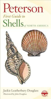 Shells_of_North_America